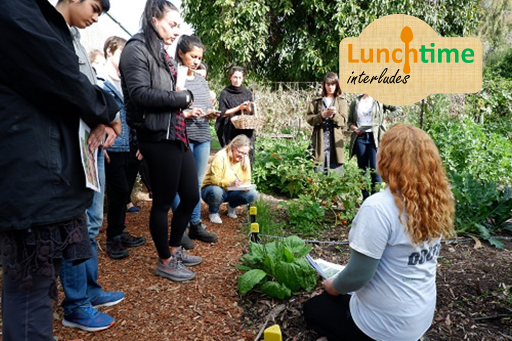 Library Lunchtime Interlude - Organic Gardening for Beginners